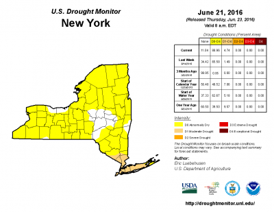 The US Drought Monitor report for June 23, 2016 show the vast majority of New York State as Abnormally Dry.
