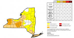 July 14 2016 US Drought Monitor report for New York