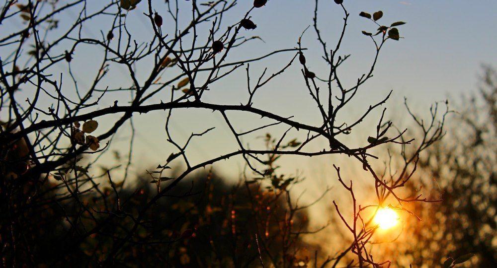 finger lakes weather forecast monday november 28 2016 sun clouds rain