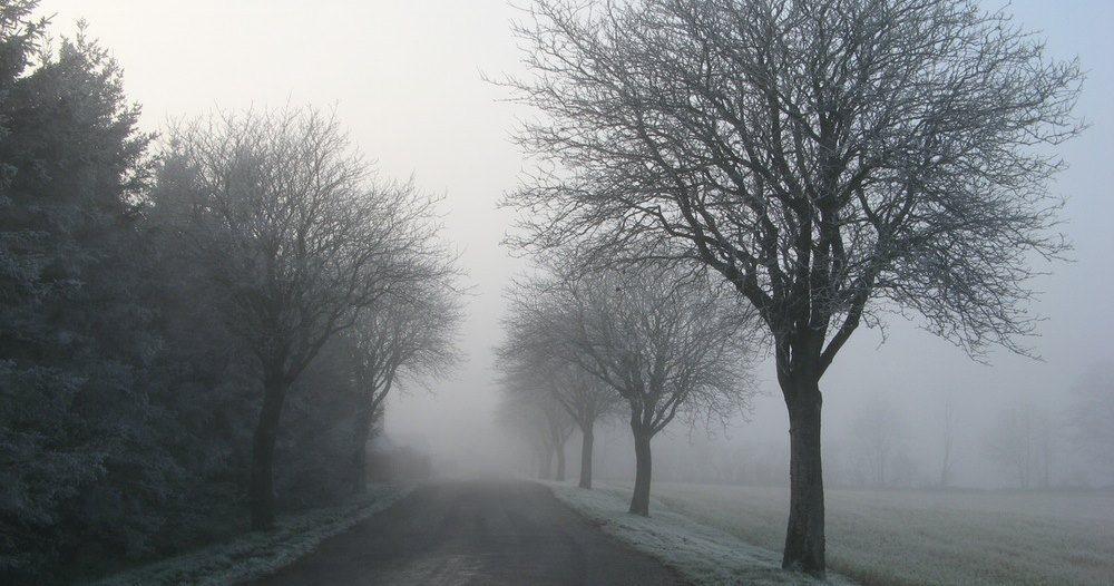 finger lakes weather forecast freezing rain ice drizzle fog