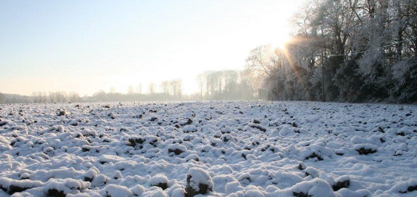 finger lakes weather forecast february 1