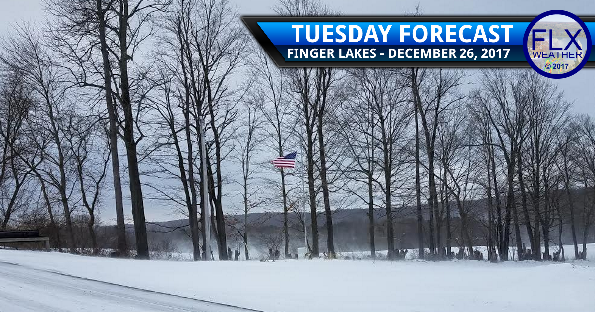 Frigid air descends on the Finger Lakes
